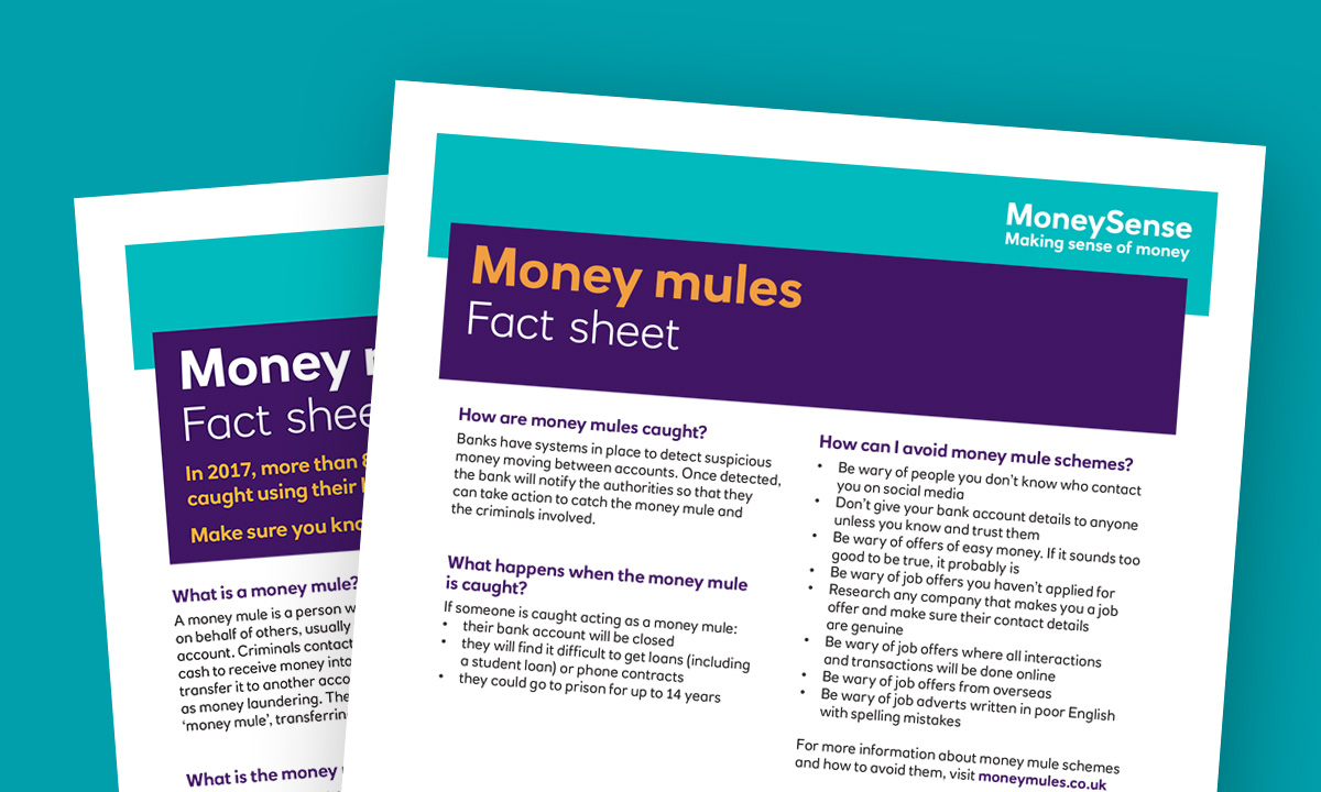 Money mules fact sheet